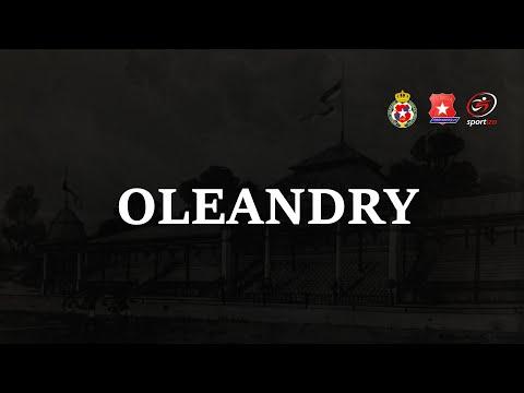 Oleandry