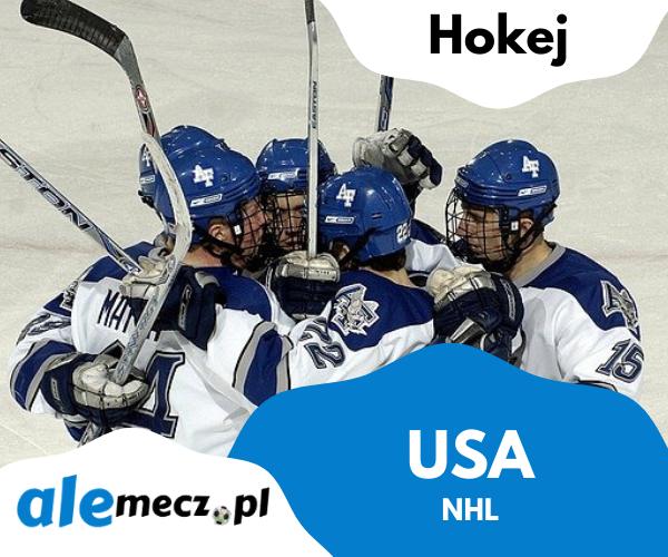 usa nhl - NHL (USA)