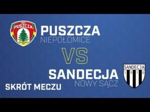 Read more about the article [Skrót] Puszcza Sandecja 0-1| PUSZCZA TV