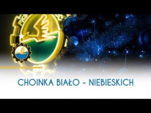 TV Stal: Choinka biało – niebieskich