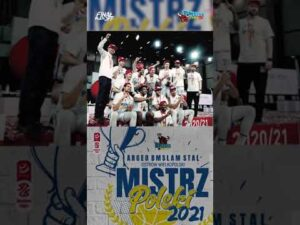 Read more about the article #shorts Finał PlayOff 2021. 6 mecz #MistrzPolski #highlights #2