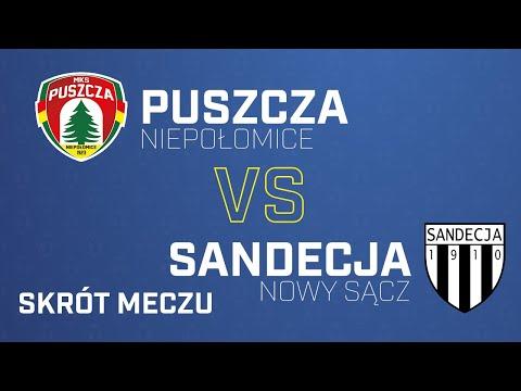 You are currently viewing [Skrót] Puszcza – Sandecja 1-2 | PUSZCZA TV