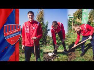 Read more about the article Nadszedł czas sadzenia drzew!